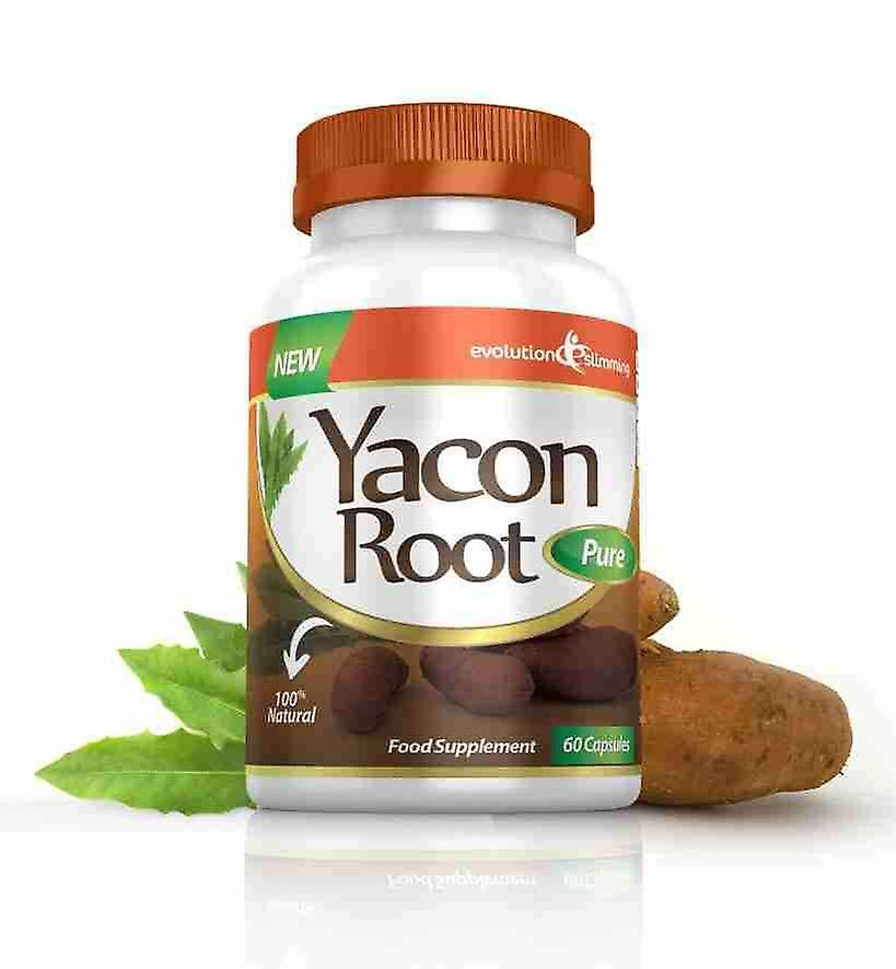 Yacon Root Pure 500mg - 60 Capsules - Fat Burner and Appetite Control - Evolution Slimming