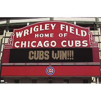 Chicago Cubs - Win Zeichen Poster drucken