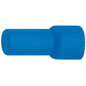End connector 1.5 mm² 2.5 mm² Insulated Blue Klauke 1130 1 pc(s)