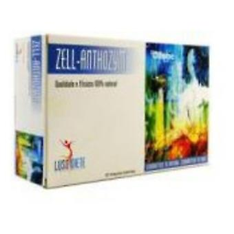 Luso Diete Zell-Anthozym 30X10 Ml.