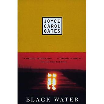 Black Water (Plume contemporary fiction)