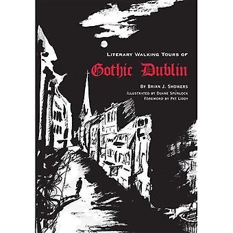 Literary Walking Tours of Gothic Dublin