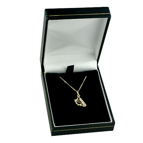 9ct Gold 13x8mm Harp Pendant with a curb Chain 16 inches Only Suitable for Children