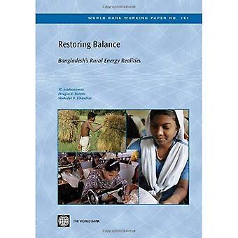 Herstel saldo: Van Bangladesh landelijke energieproblemen (Wereldbank Working Paper-reeks)