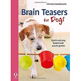 Brain Teasers for Dogs