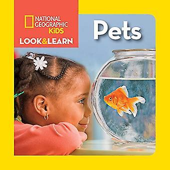 Suchen & lernen: Haustiere (Aussehen & lernen) (Aussehen & lernen)