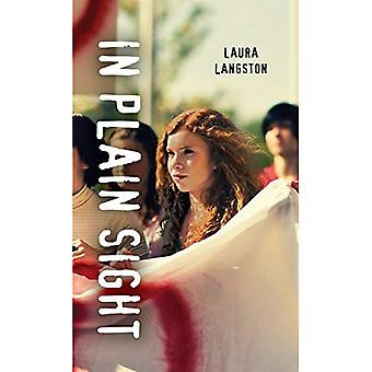 In Plain Sight (Orca Soundings (Paperback))