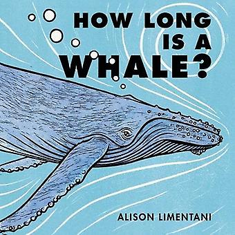 How Long is a Whale? by Alison  Limentani - 9781910716519 Book