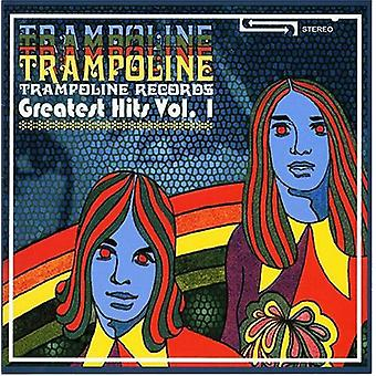 Trampolin poster største Hits vol. 1 - trampolin poster største Hits vol. 1 [CD] USA importerer