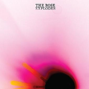 Drøm båd - Rose Explodes [Vinyl] USA importerer