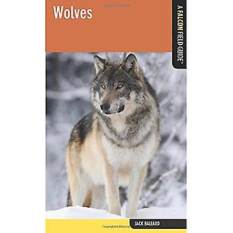 Wolves (Falcon Field Guides)