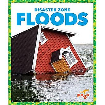 Floods by Vanessa Black - Cari Meister - 9781620313985 Book