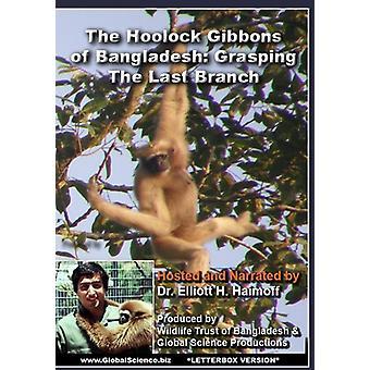 Hoolock Gibbons af Bangladesh: grådige sidste [DVD] USA importen