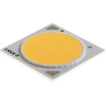 HighPower LED Cold white 86 W 5043 lm 115 °