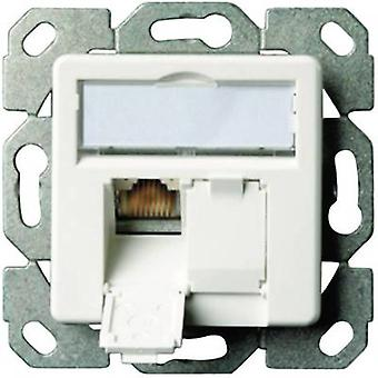 Network outlet Flush mount Insert with main panel CAT 5e 2 ports