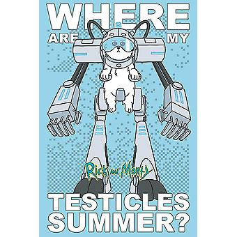 Rick and Morty poster where are my testicles summer