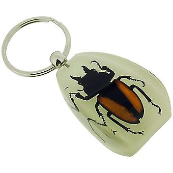 The Olivia Collection Glow in Dark Bug Key Ring with REAL Golden Winged Beetle