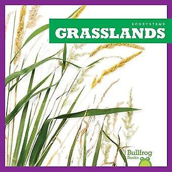 Grasslands by Nadia Higgins - 9781620316795 Book