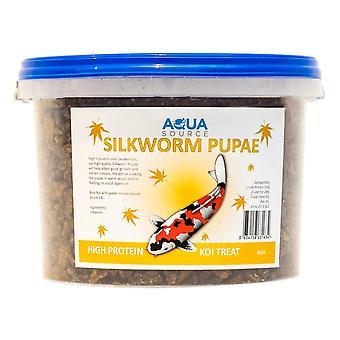 Aqua Source Silkworm Pupae