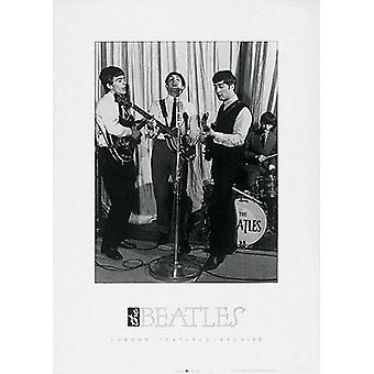 Beatles jam session Poster Print (20 x 28)