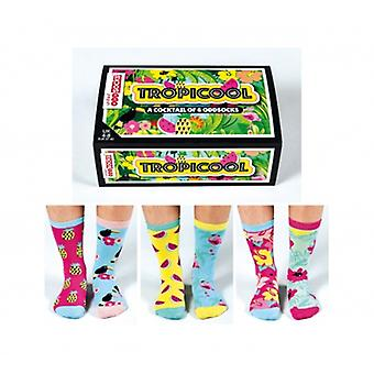 United Oddsocks Ladies Socks - Tropicool