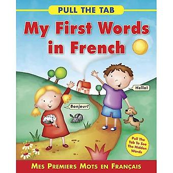 Pull the Tab: My First Words in French: Mes Premiers Mots En Francais