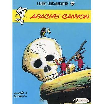 Lucky Luke Vol.17: Apache Canyon (Lucky Luke Adventure)
