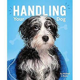 Hantera din hund (hundens liv)