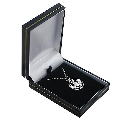Silver 19mm Scottish Thistle Pendant with a twisted wire surround with a Rolo Chain 16 inches Only Suitable for Children