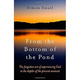 Du fond de l'étang: l'Art oublié d'éprouver Dieu dans les profondeurs de l'instant présent