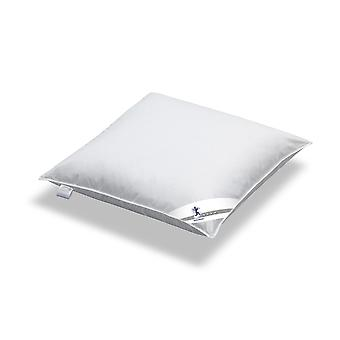 SPESSART dream silver - feather pillows stuck