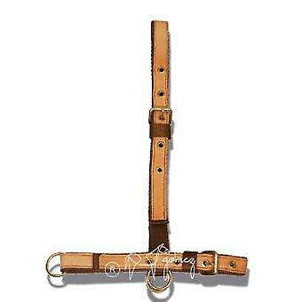 Gómez Nylon Bridle Cow (Horses , Horse riding equipment , Head stall , Halters)
