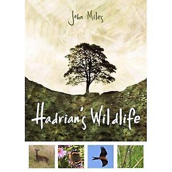Hadrian's Wildlife