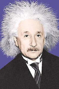 Albert Einstein mad hair fridge magnet