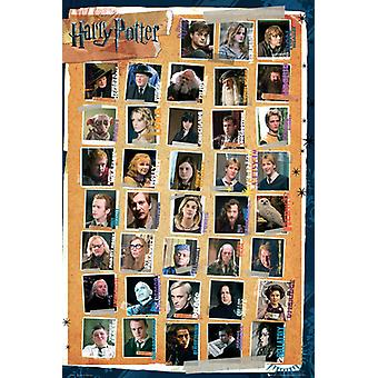 Harry Potter 7 Characters Maxi Poster 61x91.5cm