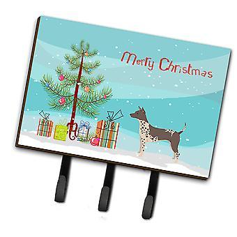 Amerikaanse haarloze Terriër kerstboom leiband of sleutelhaak