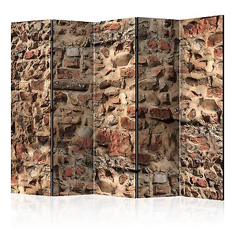 Rumdeler - gammel væg II [værelse delelinjer]