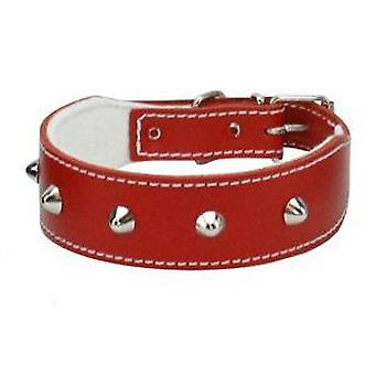 Petpall Collar Bulldog Frances 45 Cm Rojo (Dogs , Collars, Leads and Harnesses , Collars)