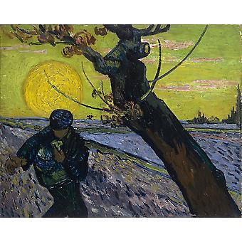 Vincent Van Gogh - Sower with Setting Sun, 1888 01 Poster Print Giclee