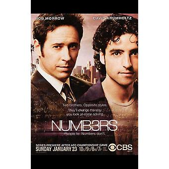 Numb3rs Movie Poster (11 x 17)