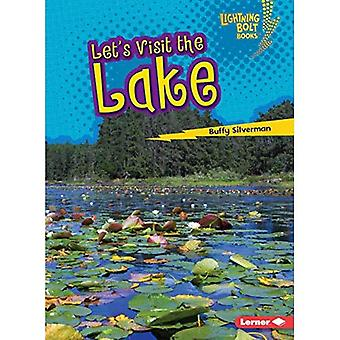 Let's Visit the Lake (Lightning Bolt Books Biome Explorers)
