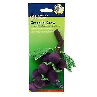 Rosewood Boredom Breaker Grape And Gnaw Small Animal Toy