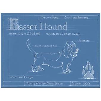 Blueprint Бассет-хаунд плакат печати Итана Харпер (16 x 12)