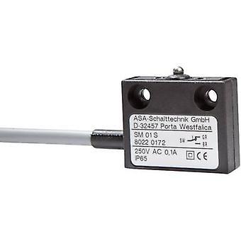 ASA Schalttechnik Microswitch SM 01 S 250 V AC 0.1 A 1 x On/(On) IP65 momentary 1 pc(s)