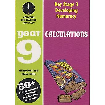 Developing Key Stage 3 Numeracy: Calculations Year 9: Activities for the Daily Maths Lesson (Developing Numeracy)
