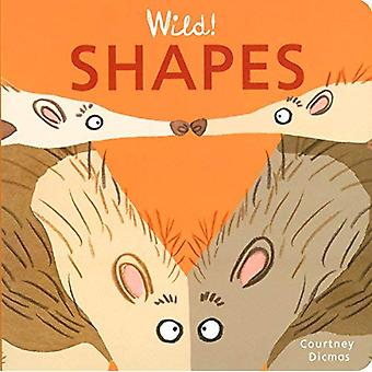 Shapes (Wild! Concepts) [Board book]