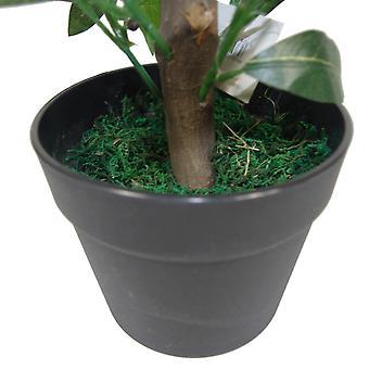 50cm Dwarf Artificial Bay Tree Laurel Topiary Bush