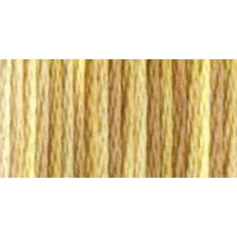 Dmc Color Variations Six Strand Embroidery Floss 8.7 Yards Toasted Almond 417F 4072