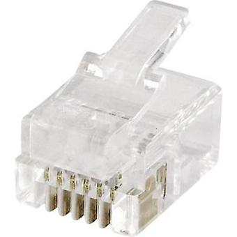 econ connect MPL66R, Pin RJ12 Plug, straight Clear
