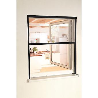 Volar el protector de pantalla de insectos juego ciego ALU-ventana 100 x 160 cm color antracita